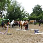 15-08 Reiterfest 018